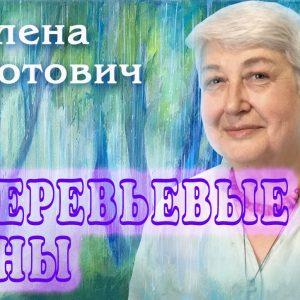 Котович Е. 378_poster
